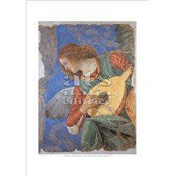 UN ANGELO CHE SUONA IL LIUTO Melozzo - Pinacoteca, Citta' del Vaticano