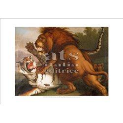 COMBATTIMENTO DI UN LEONE CON UNA TIGRE Peter Wenzel -  Pinacoteca, Citta' del Vaticano