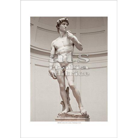 DAVID Michelangelo - Galleria dell'Accademia, Firenze