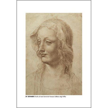 STUDY OF FEMALE HEAD Leonardo - Galleria degli Uffizi, Florence