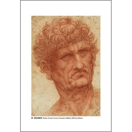 STUDY OF A MAN'S HEAD Leonardo - Galleria dell'Accademia, Venice