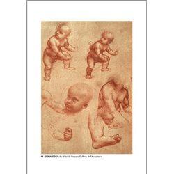 STUDY OF BABIES Leonardo