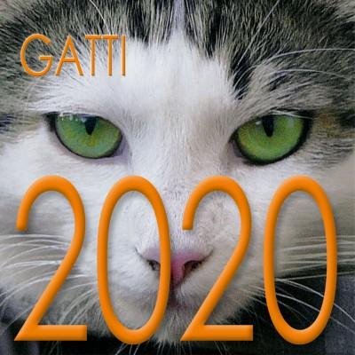 Calendar 8x8 cm CATS