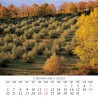 Calendar 8x8 cm TUSCANY FLOWER