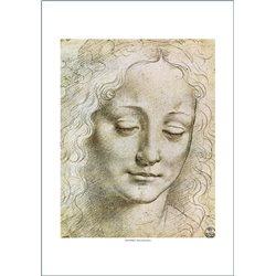 TESTA DI GIOVINETTA Leonardo