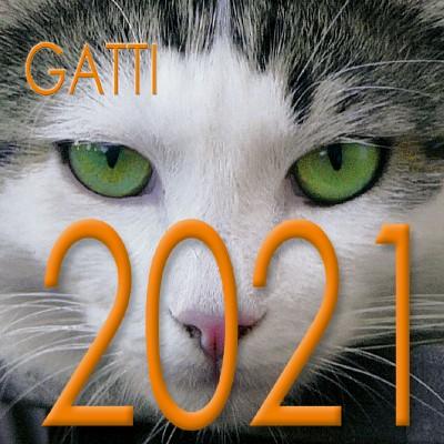 Calendario 8x8 cm GATTI