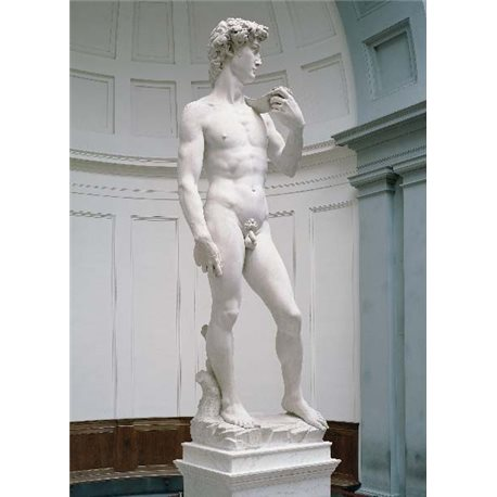 FLORENCE David - Michelangelo
