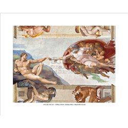 CREAZIONE DI ADAMO Michelangelo -  Cappella Sistina, Citta' del Vaticano